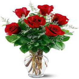 Parsippany Florist | Six Red Roses