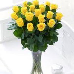Parsippany Florist | 18 Yellow Roses
