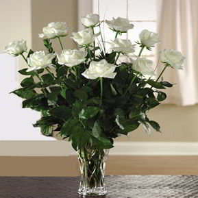 Parsippany Florist | 12 White Roses