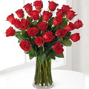 Parsippany Florist | 24 Red Roses