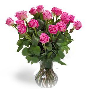 Parsippany Florist | 18 Pink Roses